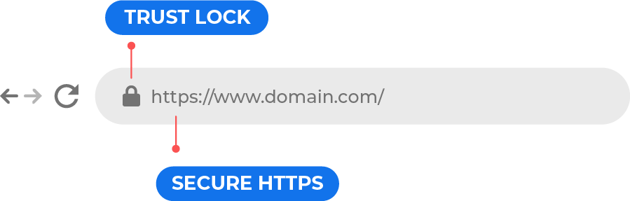 Domain Validation Certificate